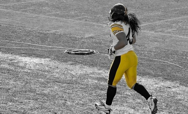 Troy-Polamalu-618x3751-618x375